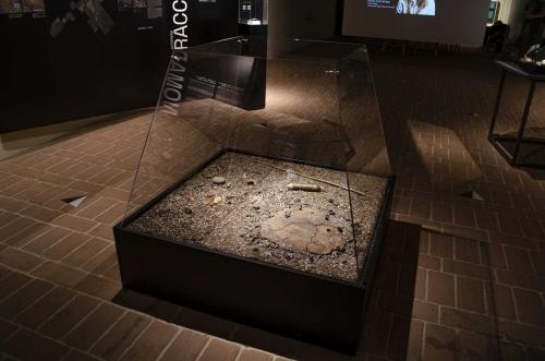 Museo del Mesolitico Tolentino (3)